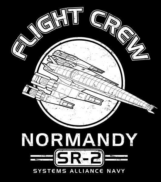 Normandy Flight Crew