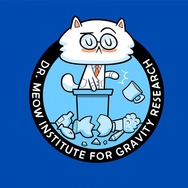 Gravity Studies