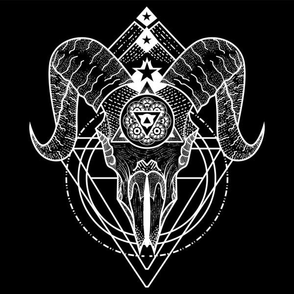 Illustration Skull 2