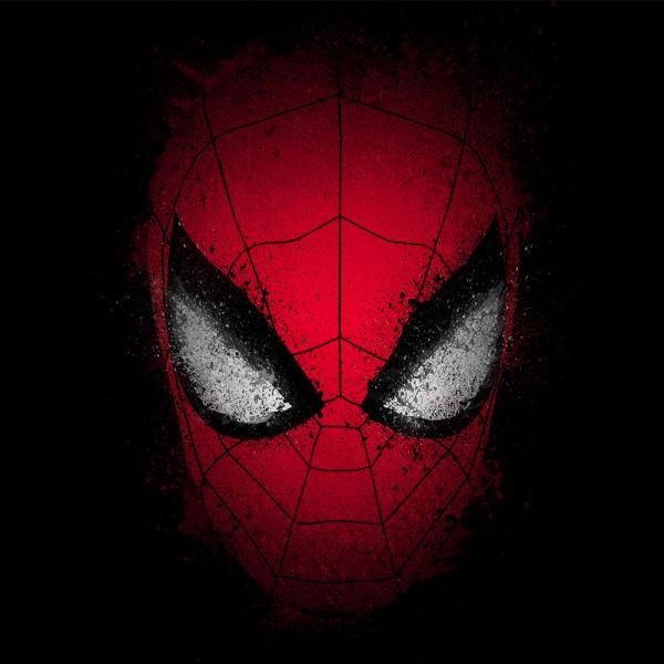 Spider inside