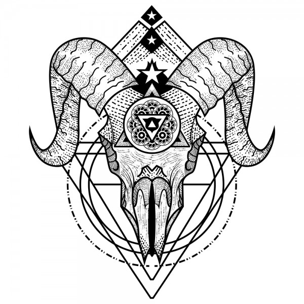 Illustration Skull 1