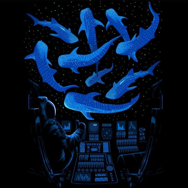 Astronaut Killer Whales